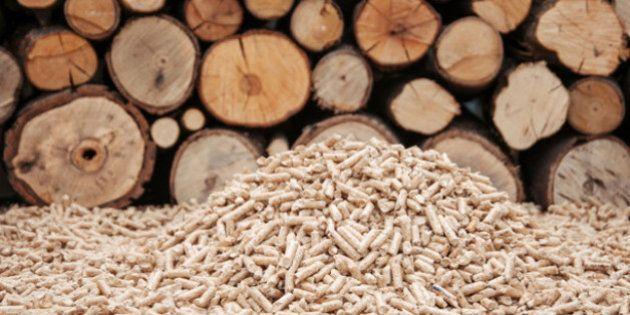 Aujourd'hui, même le bois non recyclable se