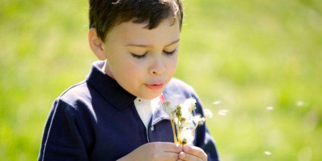Les enfants autistes aidés par le