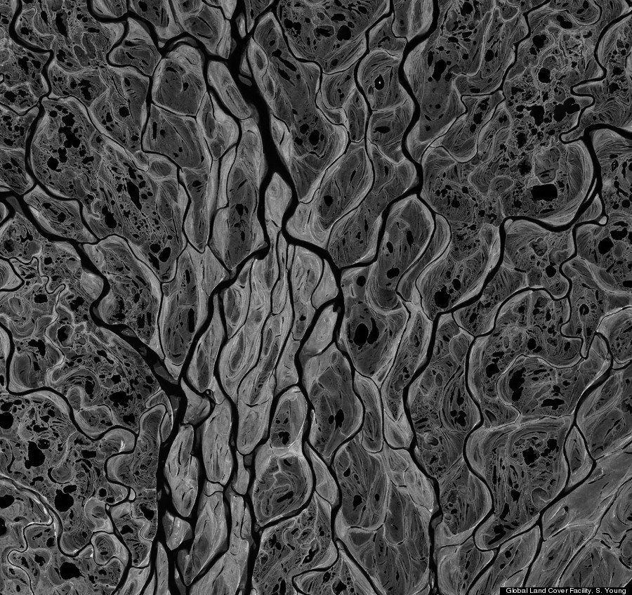 Ces photos sont-elles microscopiques ou