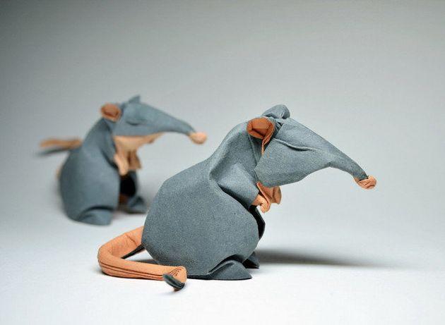 VIDÉO. Les origamis splendides de Hoang Tien Quyet, qui humidifie le papier avant de le