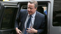 Cameron dévoile sa