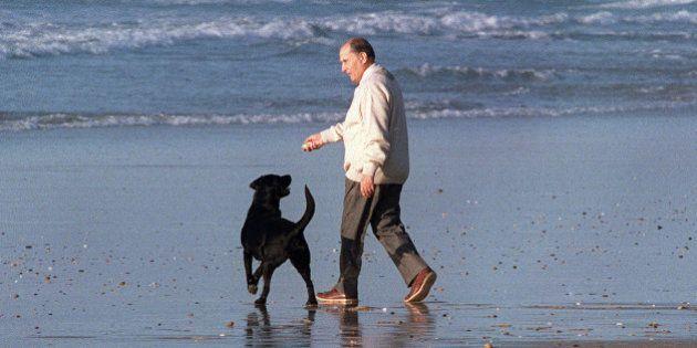 Les chiens des présidents de la République, une longue tradition riche de petites