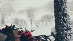 Les premières chutes de neige ont ravi les internautes au