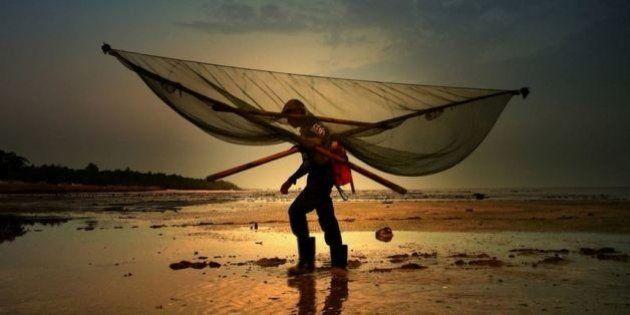 PHOTOS. 15 magnifiques photos en compétition pour le World Photography