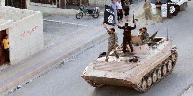 2014, l'année où l'État islamique a fait main basse sur