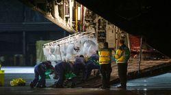 Ebola: haute sécurité autour de l'infirmière contaminée arrivée à