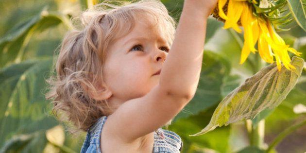 Une semaine pour trouver une alternative aux pesticides