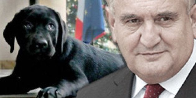 Voeux 2015 : Raffarin donne un conseil à Hollande pour dresser son chien,