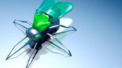 PHOTOS. Cape d'invisibilité, drones insectes, super-oreilles : quand la science s'inspire de la