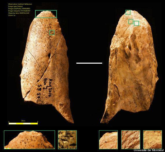 La découverte de cet outil préhistorique nous rapproche de l'homme de