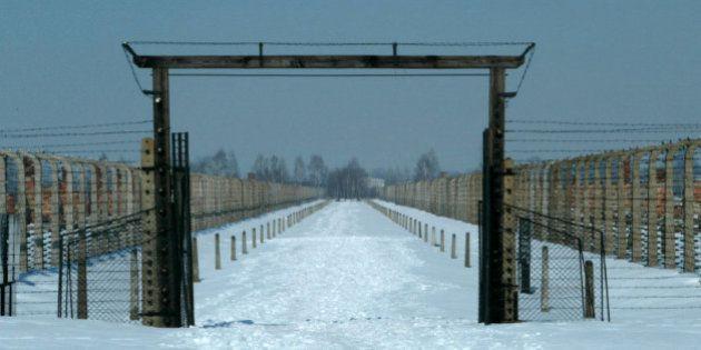 VIDÉOS. Avant la libération d'Auschwitz en 1945, la