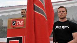 Le parti néo-nazi Aube dorée réédite son score de 2012, avec près de 7% des