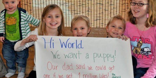 Facebook: Des enfants gagnent le droit d'avoir un chien après avoir remporté un pari avec leur