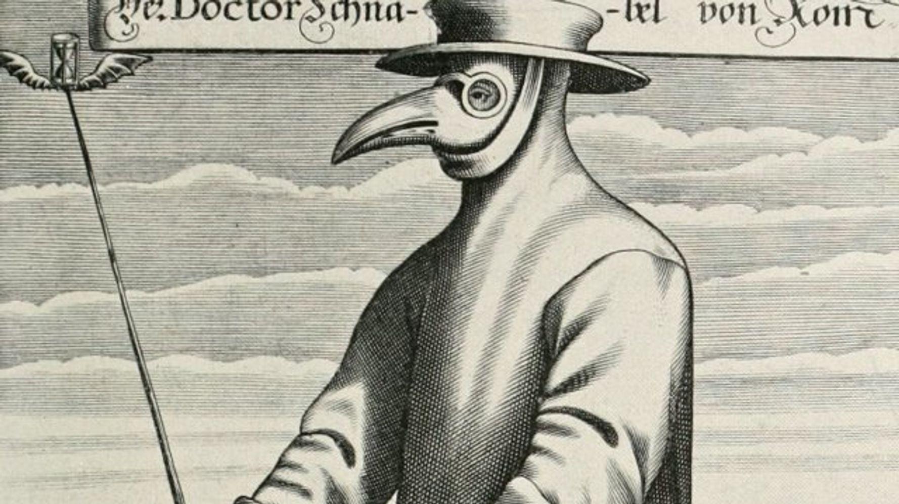Le retour de la peste: comment le bacille a fait sa réapparition   Le  Huffington Post LIFE