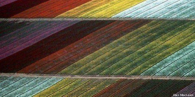 PHOTOS. La terre vue du ciel, une série de clichés signés Alex