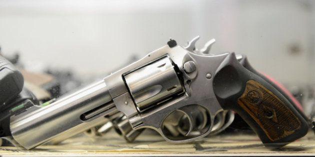 Tuerie de Newtown: le débat sur le port d'armes à feu est relancé mais va-t-il aboutir un