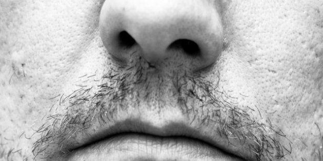Étude: des chercheurs australiens établissent un lien entre odorat et