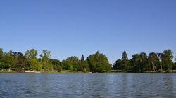 Un second tronc humain découvert au Bois de Vincennes sur indication de