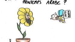 Egypte : Que pousse-t-il après le printemps arabe