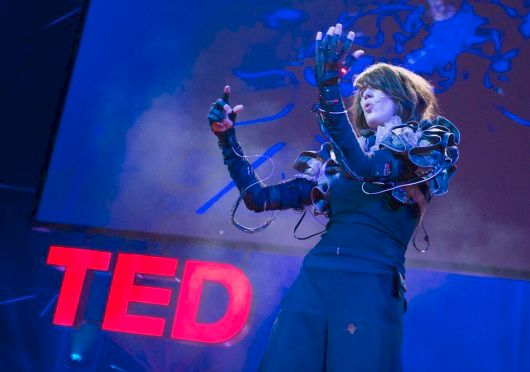 TED : Black-out, particules... et crash en