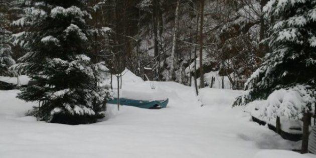 PHOTOS. Météo: à cause de la neige, la DGAC demande une réduction de 40% des vols dimanche à Roissy et...
