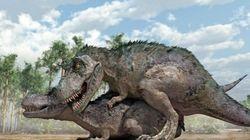 La vie sexuelle des dinosaures soulève encore beaucoup de