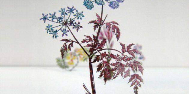 Les fleurs du Bien et du