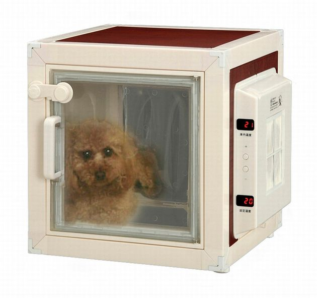 PHOTOS. Un frigo pour animaux de compagnie, l'invention insolite d'une entreprise japonaise contre la