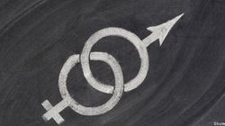 La théorie du genre, nouveau cheval de bataille de la Manif pour