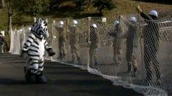 Le zoo de Tokyo se prépare à une fugue de