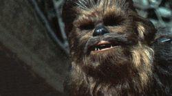 La tête de Chewbacca mise à