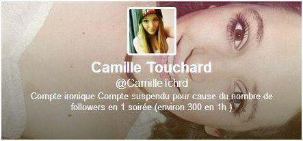 Camille Touchard : le sort d'une adolescente inconnue déchaîne le web et affole la police et la