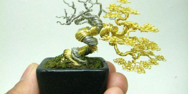 The bonsaï