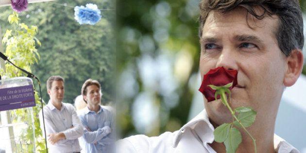 Fête de la Rose : le langage des fleurs en