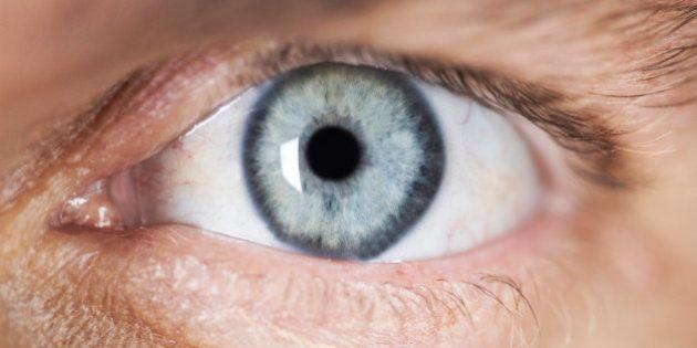 Ophtalmologie: une nouvelle partie de la cornée humaine