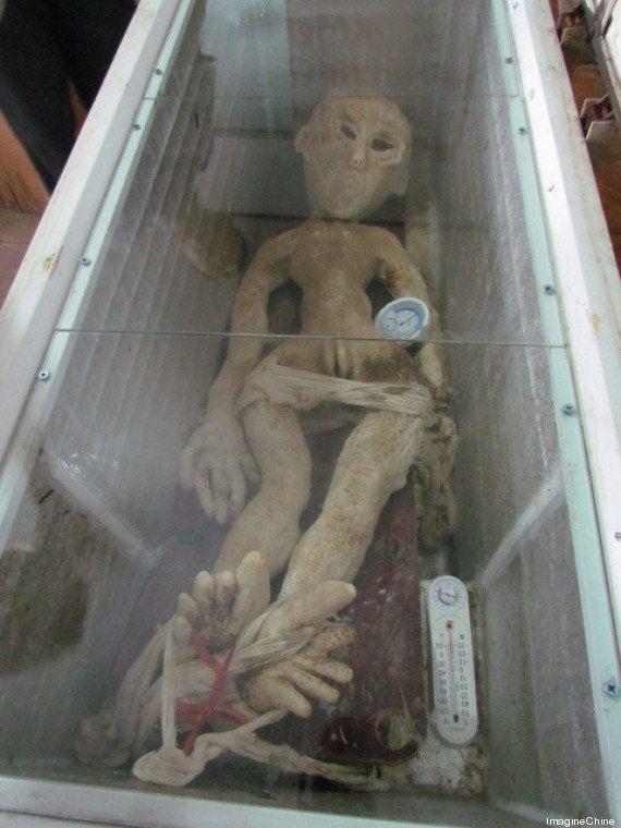 PHOTOS. Aliens: Un fermier chinois arrêté pour un