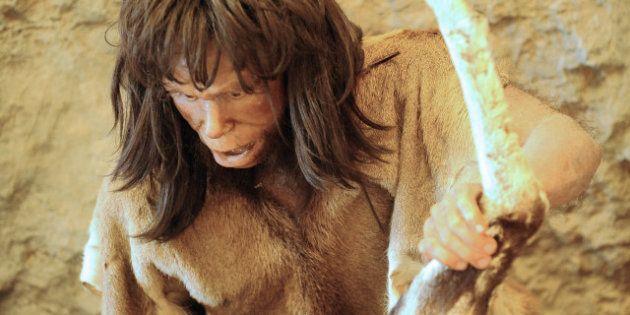 Hommes préhistoriques: des chercheurs inventent un programme pour recréer leurs