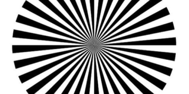 PHOTO. Une illusion d'optique imaginée par des chercheurs français pour observer l'activité