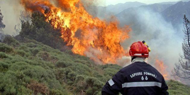 Incendie dans les Pyrénées-Orientales : 100 pompiers et 7 avions mobilisés contre un feu de