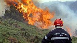 100 pompiers et 7 avions mobilisés contre un feu de forêt dans les
