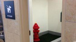 Dans l'aéroport de San Diego, vous avez des toilettes pour femmes, hommes,