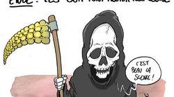 Étude sur les OGM: au moins une réaction