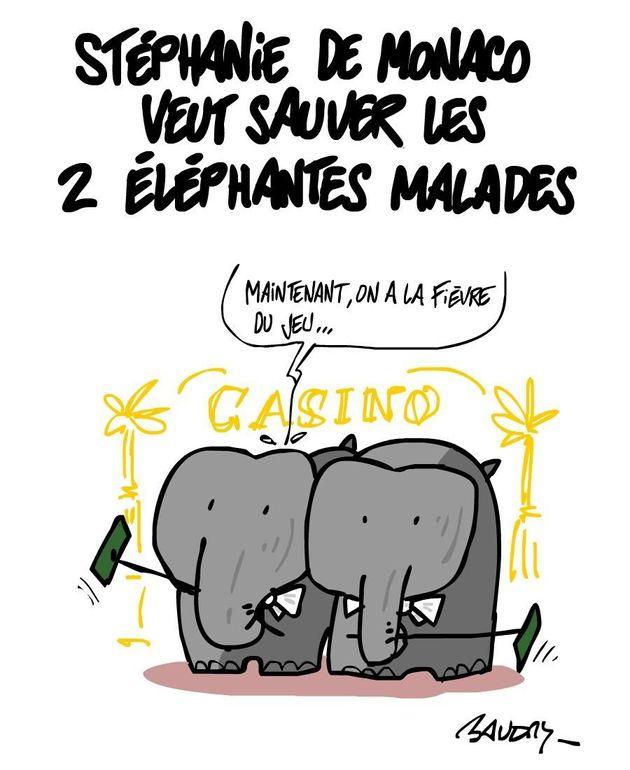 Éléphants du zoo de Lyon: Stéphanie de Monaco double Brigitte