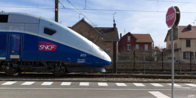 TGV: les villes qui vont devoir patienter pour une ligne à grande