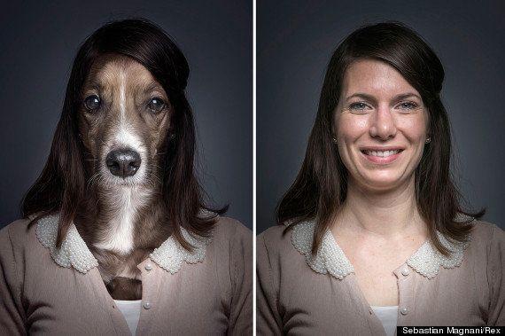 PHOTOS. Un photographe immortalise la ressemblance entre chiens et