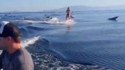 Faire du ski nautique au milieu des
