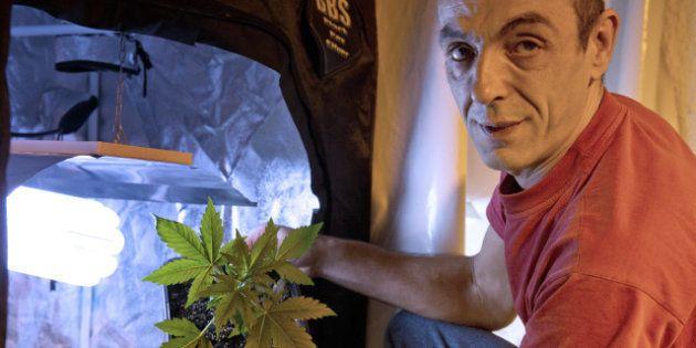 Cannabis social club: le porte-parole du mouvement mis en garde à vue puis convoqué au