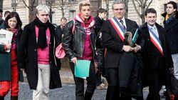 Mariage gay: la pétition des anti jugée