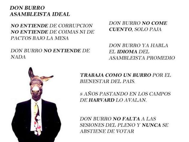 VIDÉO. Équateur : le conseil électoral refuse d'inscrire un âne comme candidat à l'Assemblée