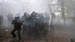 Notre-Dame-des-Landes : des manifestants interpellés à